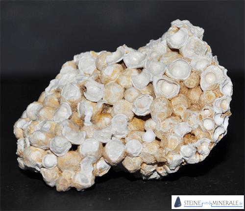 erbsenstein_aragonit - Aufnahme des Minerals