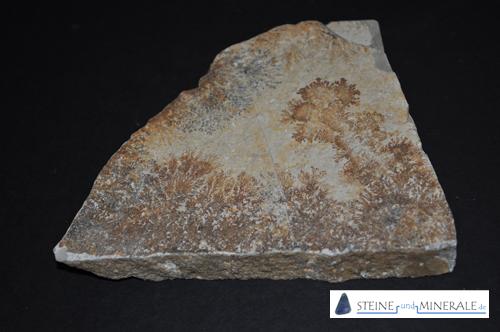 sandstone - Mineral und Kristalle