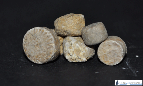 bonifatiuspfennige - Mineral und Kristalle